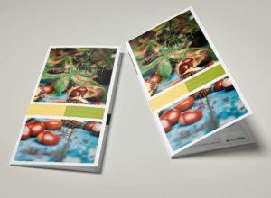 OAFOCH Folder
